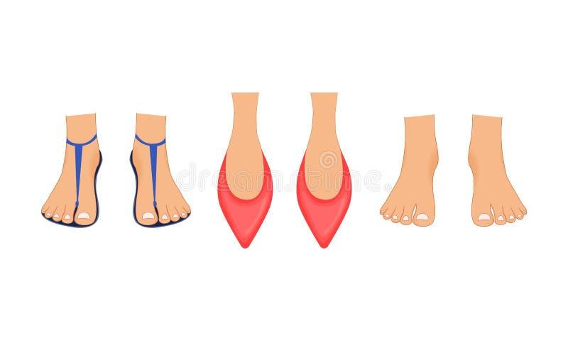 美好的女性腿在红色拖鞋、夏天海滩凉鞋和赤脚与修脚 在动画片完成的例证 皇族释放例证