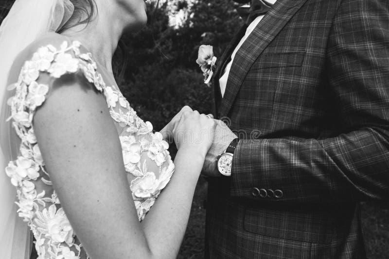 美好的婚姻的夫妇在森林有薄纱面纱和开放低后庄重装束的新娘接触蝶形领结的新郎 库存照片
