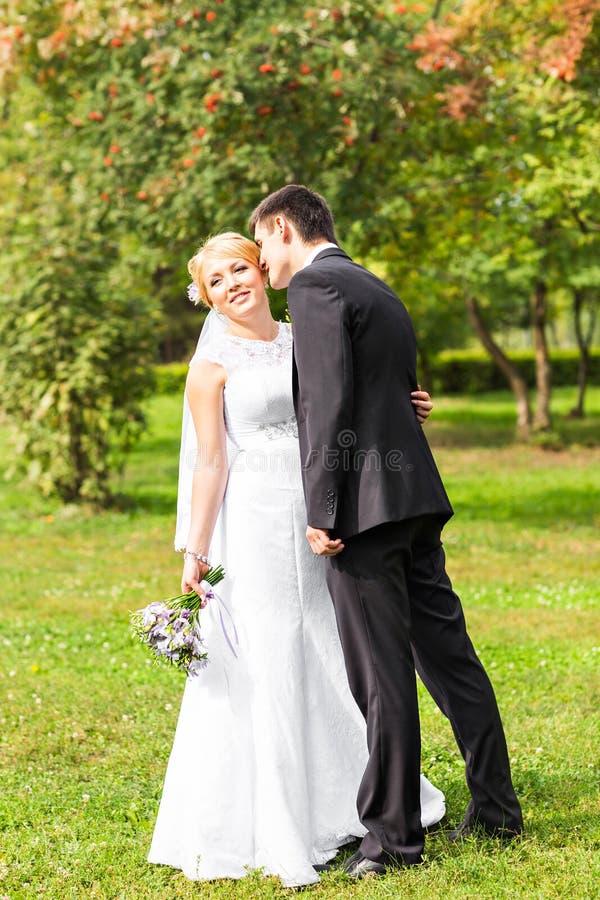 美好的婚礼夫妇在公园 他们亲吻并且互相拥抱 免版税库存照片