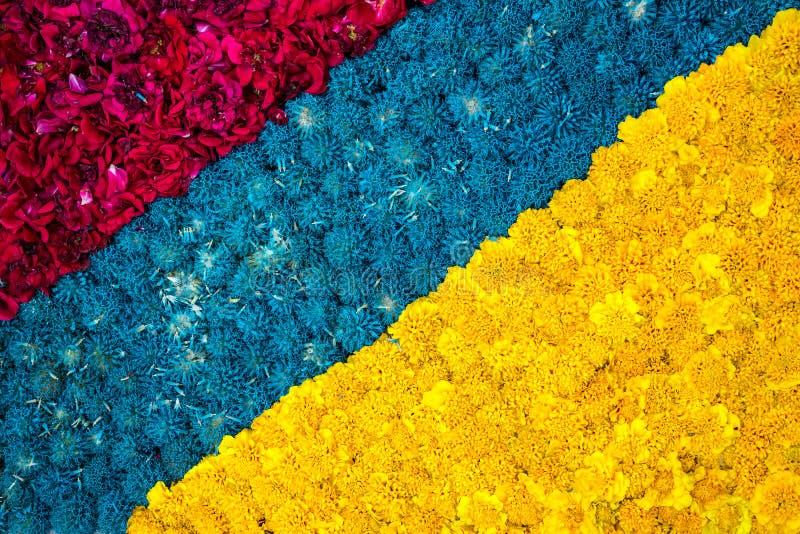 美好的对角明亮的花卉背景由黄色marig制成 免版税库存图片