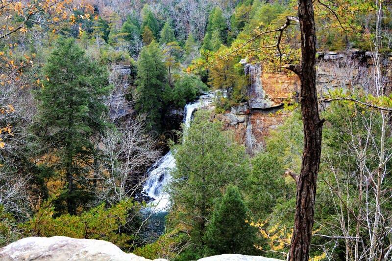 美好的山公园风景由流动的瀑布提高 免版税库存照片