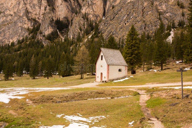 美好的山风景在有新鲜的绿色草甸的阿尔卑斯绽放的在一美好的好日子春天 多洛米蒂montains 库存图片