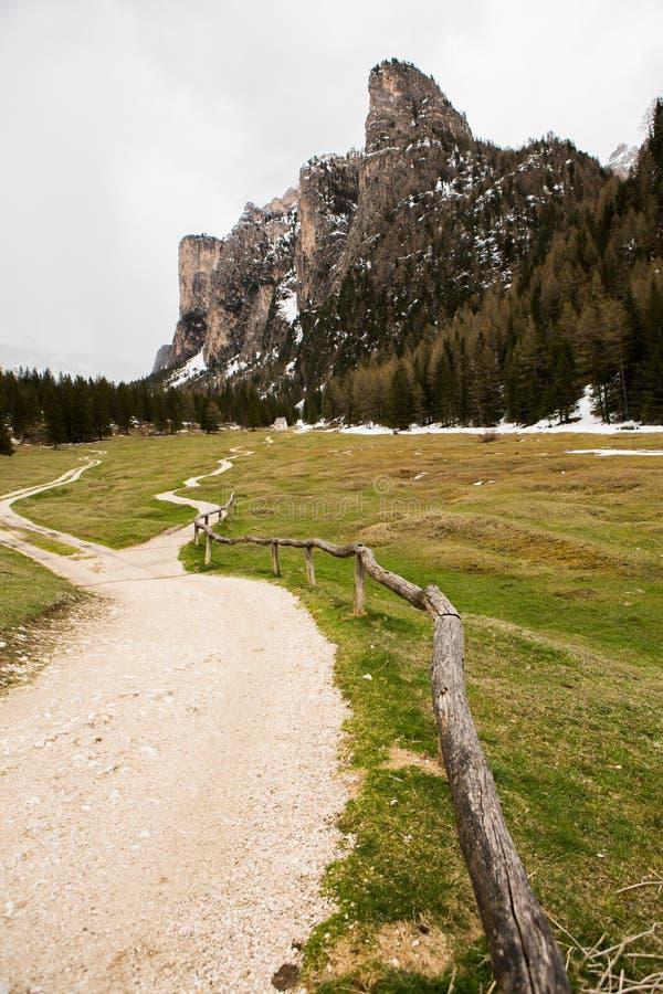 美好的山风景在有新鲜的绿色草甸的阿尔卑斯绽放的在一美好的好日子春天 多洛米蒂montains 图库摄影