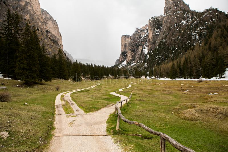 美好的山风景在有新鲜的绿色草甸的阿尔卑斯绽放的在一美好的好日子春天 多洛米蒂montains 免版税库存照片