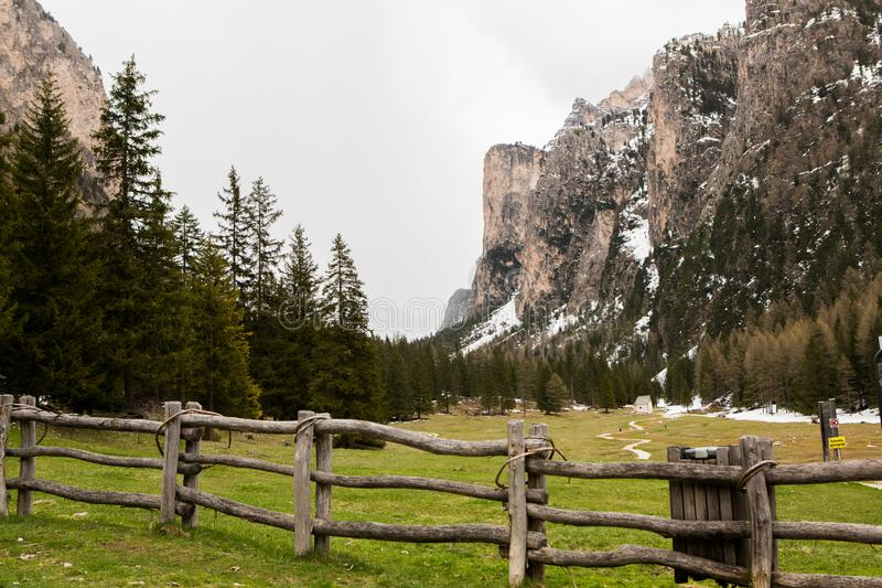 美好的山风景在有新鲜的绿色草甸的阿尔卑斯绽放的在一美好的好日子春天 多洛米蒂montains 库存照片