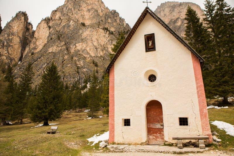 美好的山风景在有新鲜的绿色草甸的阿尔卑斯绽放的在一美好的好日子春天 多洛米蒂montains 免版税图库摄影