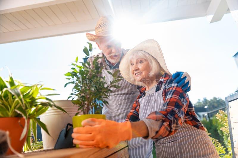 美好的年长植物妻子感觉愉快的采取的关心有她的丈夫的 免版税图库摄影