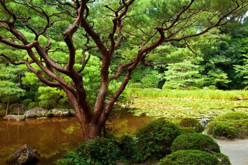 美好的庭院日语 免版税图库摄影