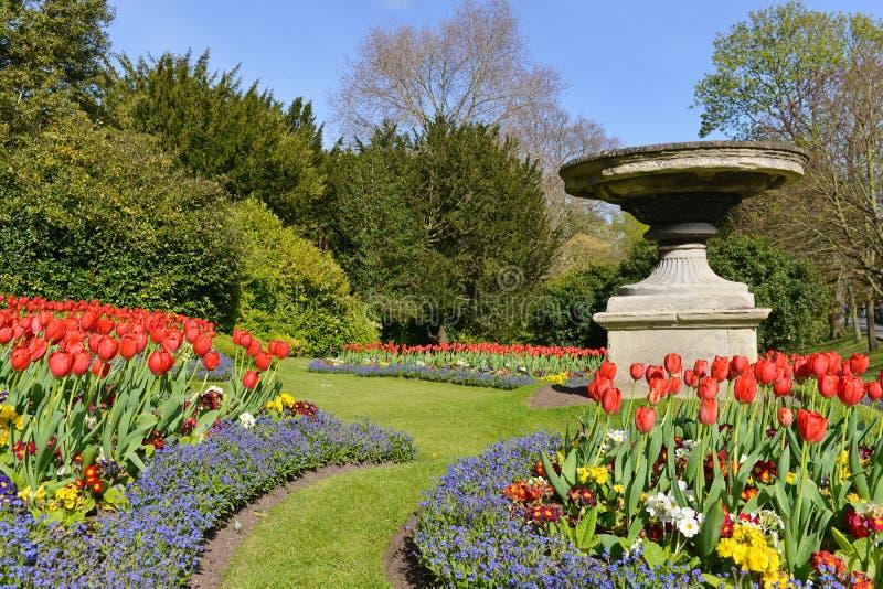 美好的庭院横向 库存图片