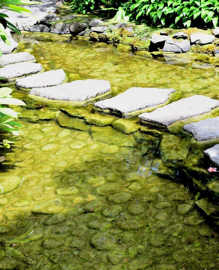 美好的庭院风景 免版税库存照片