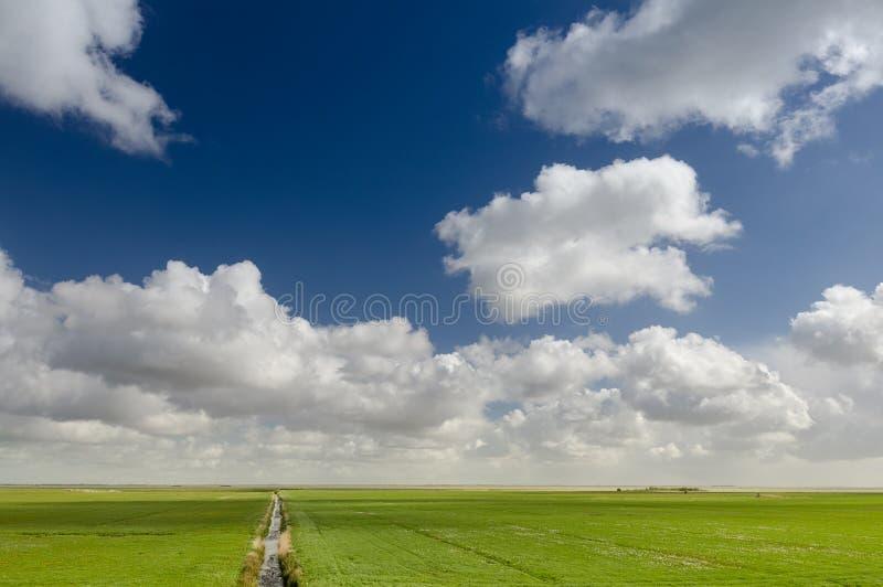 美好的开拓地风景在有典型的荷兰云彩的荷兰 免版税库存图片