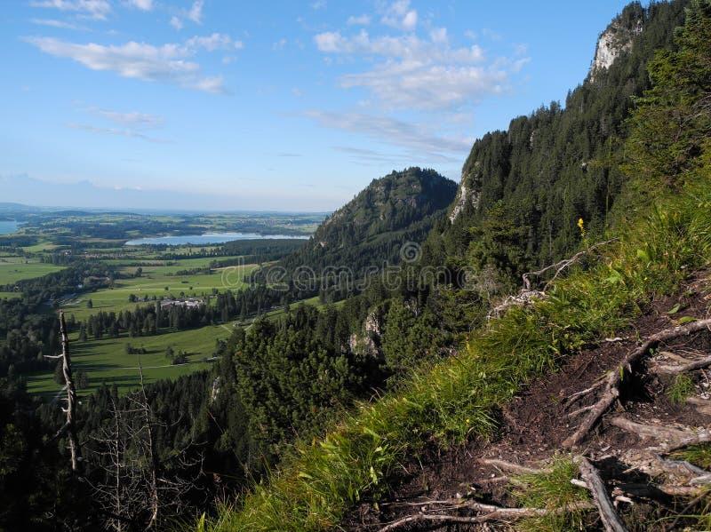 美好的德国土地自然全景照片  树,湖,从概略的飞行视图的领域 库存图片