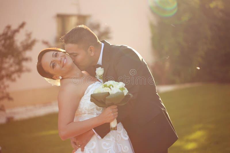美好的新娘夫妇在阳光下 库存图片