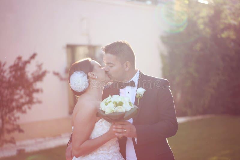 美好的新娘夫妇在阳光下 图库摄影