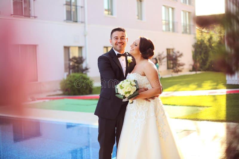 美好的新娘夫妇在阳光下 免版税库存图片