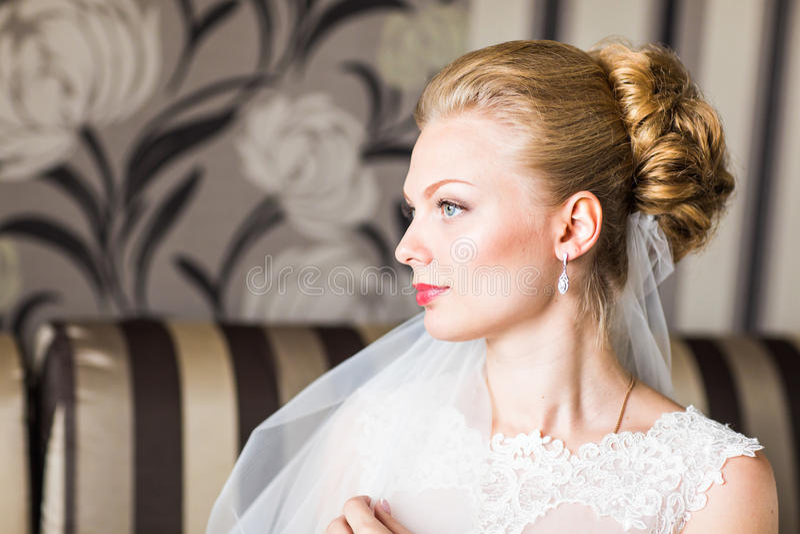 美好的新娘方式发型婚礼 年轻华美的新娘特写镜头画象图片
