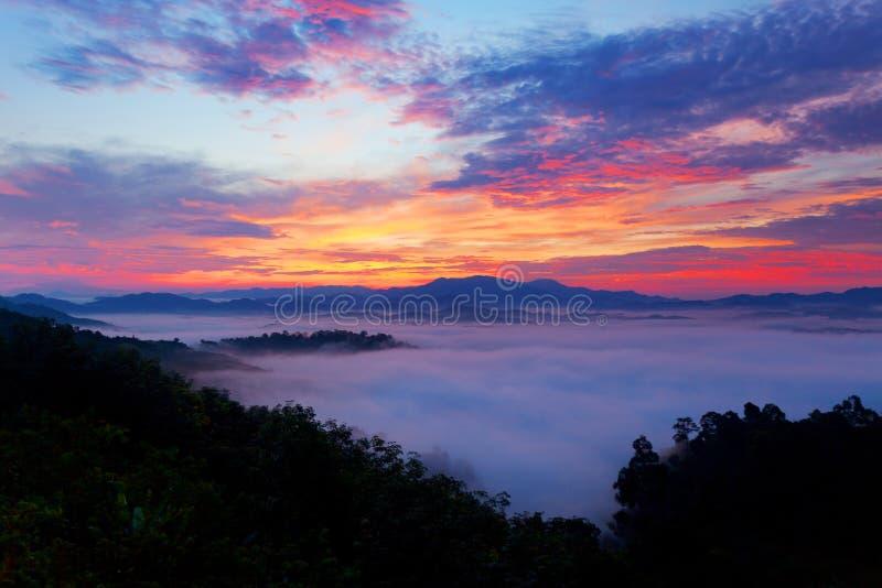 美好的日出或日落与流动在山bea的雾 库存照片