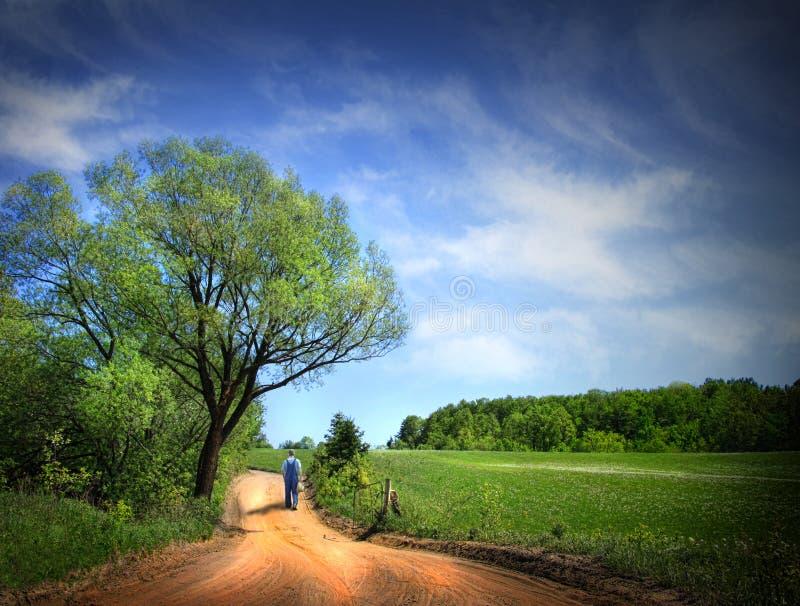 美好的日多灰尘的路春天 免版税库存照片