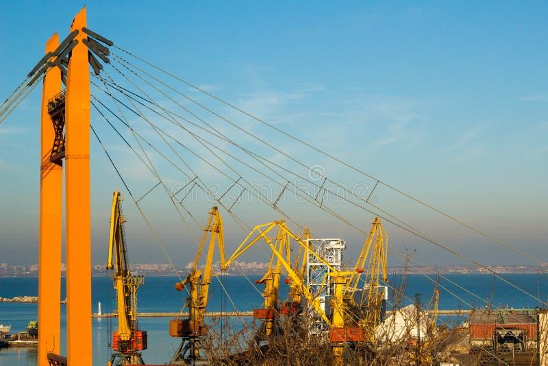 美好的日落在傲德萨海口 乌克兰 库存照片