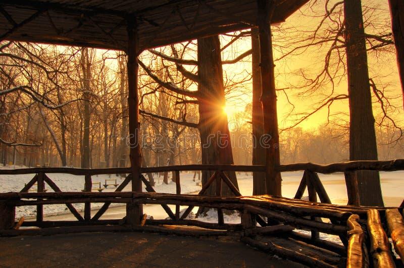 美好的日落在冬天森林里,罗马尼亚 库存图片