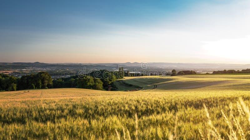 美好的日落在德国西部,一块麦田的全景,在距离一个小城市 免版税库存图片