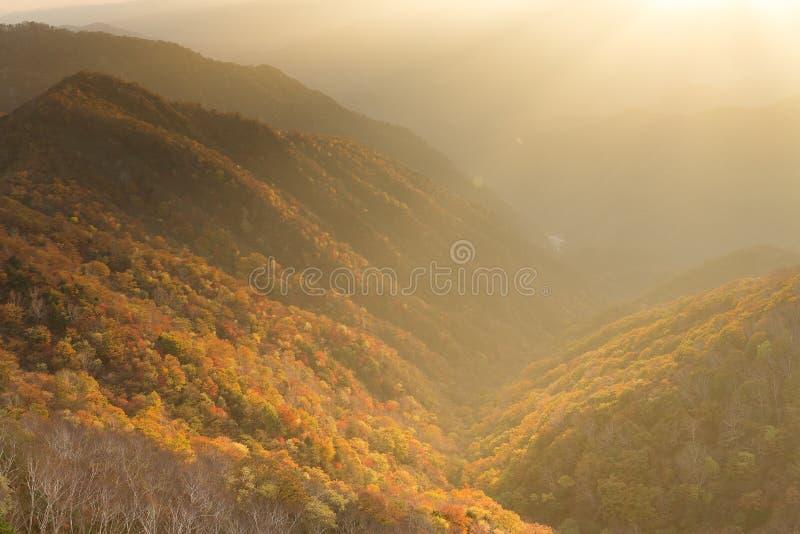 美好的日落在日本的日光 免版税库存图片