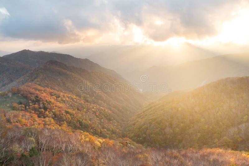 美好的日落在秋天日光  免版税库存照片