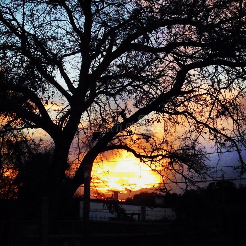 美好的日落 图库摄影