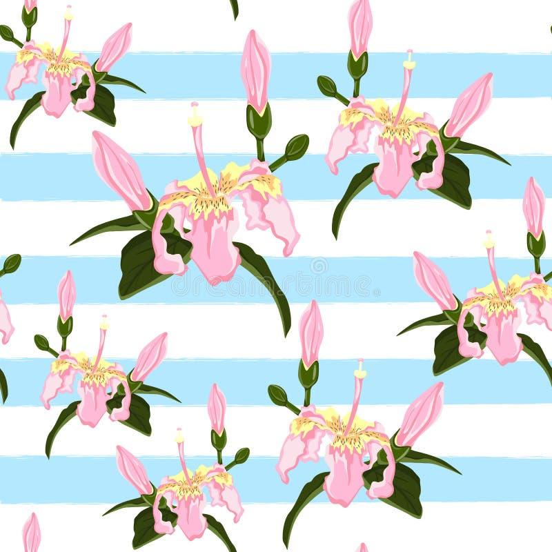 美好的时兴的传染媒介无缝的花卉密林样式背景 与绿色叶子,异乎寻常的印刷品的桃红色热带花 向量例证