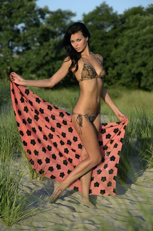 美好的时装模特儿在摆在海滩沙丘的动物印刷品比基尼泳装中 免版税图库摄影