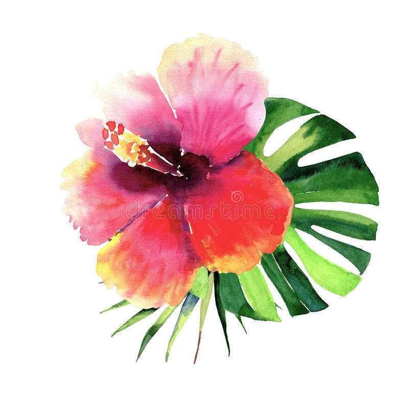 美好的明亮的可爱的美妙的热带夏威夷花卉草本夏天五颜六色的结构的热带红色花和绿色棕榈 向量例证