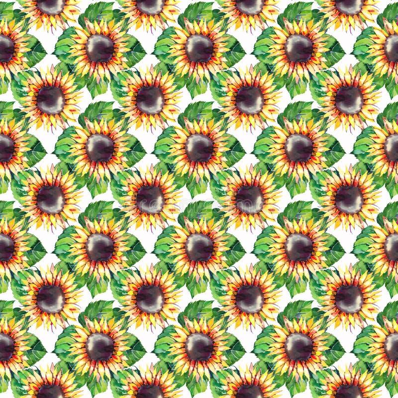 美好的明亮的图表与绿色叶子几何样式的秋天美妙的五颜六色的橙黄草本花卉向日葵 皇族释放例证