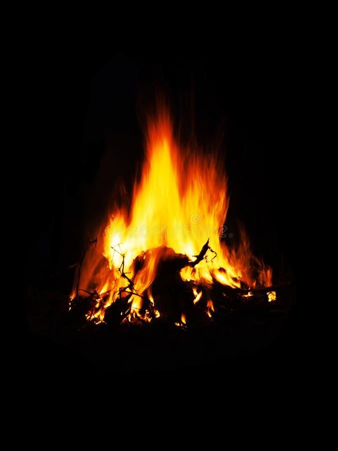 美好的明亮的橙色平衡的火,火焰高速,拷贝空间的篝火在深黑色背景 库存照片