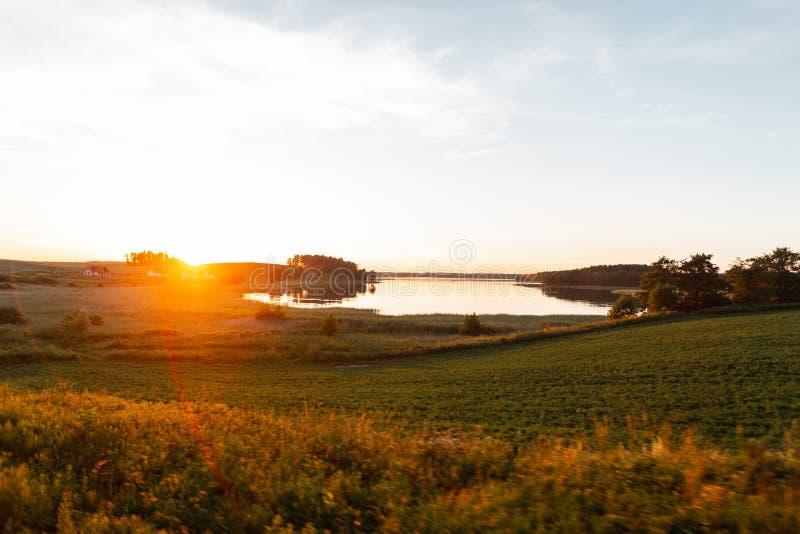 美好的明亮的橙色阳光阐明与绿草和湖的领域 在日落的夏天美好的风景 库存图片