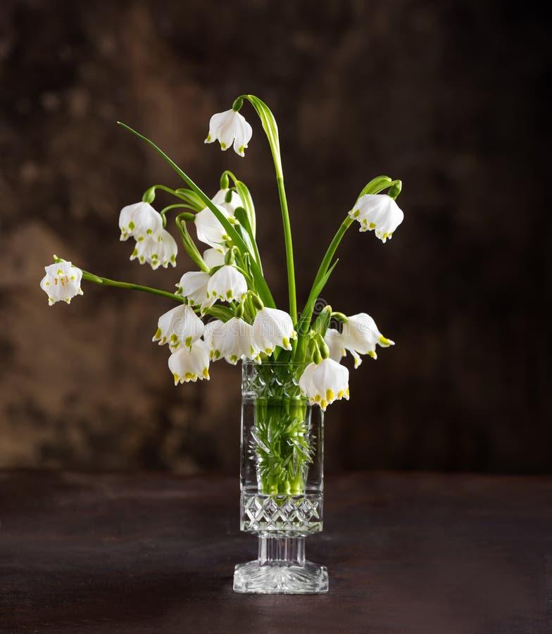 美好的春天第一朵花花束  免版税库存图片