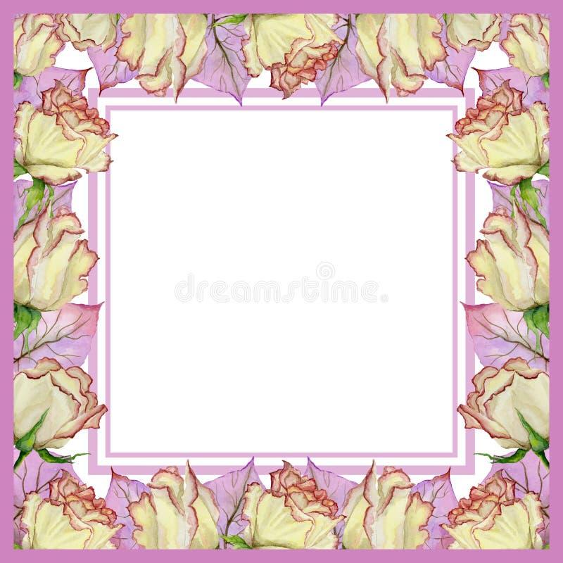 美好的春天边界由新鲜的玫瑰色花和叶子制成有静脉的 方形的桃红色框架有文本的白色背景 向量例证