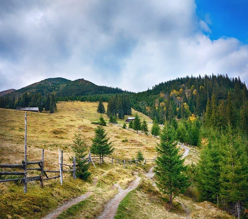 美好的晴天山风景在乌克兰喀尔巴汗 免版税库存照片
