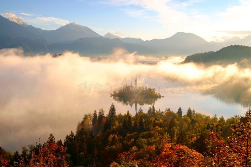 美好的有雾的日出秋天的流血的湖 免版税库存照片