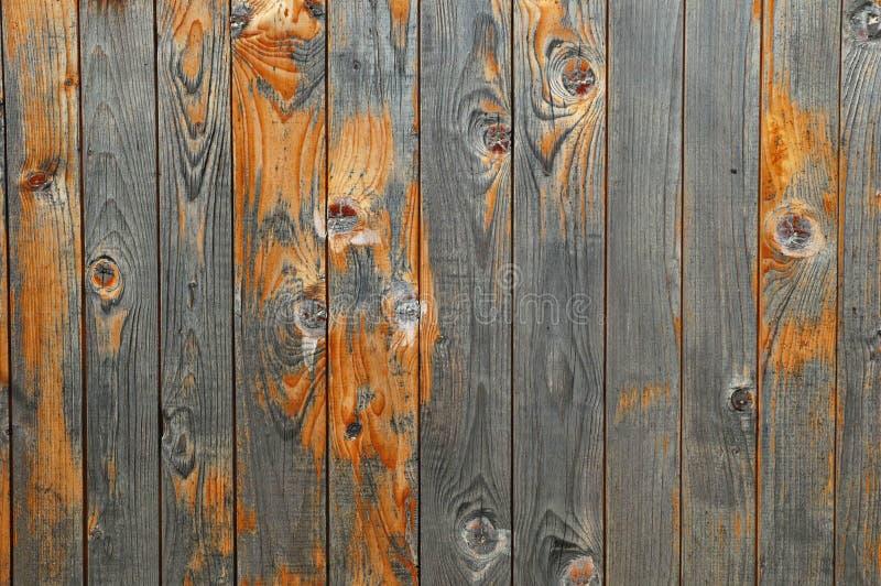 美好的木纹理 图库摄影
