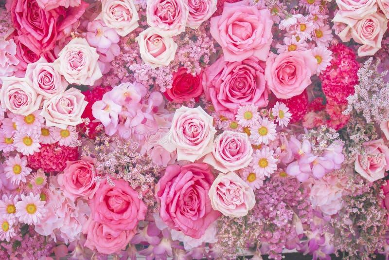 美好的桃红色玫瑰、雏菊和麦开花的样式小组纹理五颜六色的多彩多姿的装饰物在墙壁上的为 库存照片