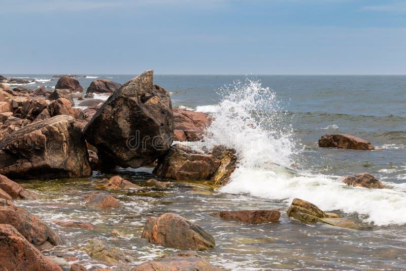 美好的海岸线在东部瑞典 库存照片