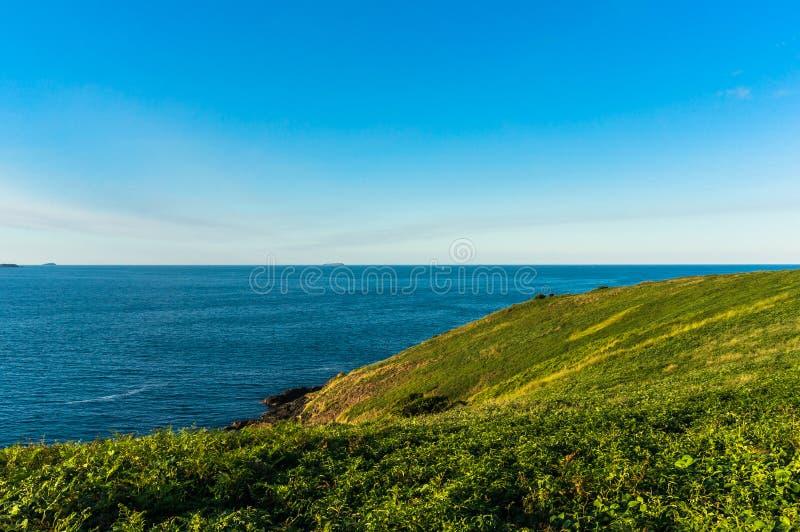 美好的海景和绿色象草的小山与 免版税图库摄影