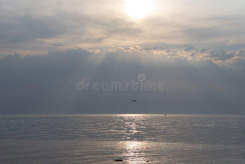 美好的海景晚上海天线和天空 平静的场面 本质的自然构成 免版税库存照片