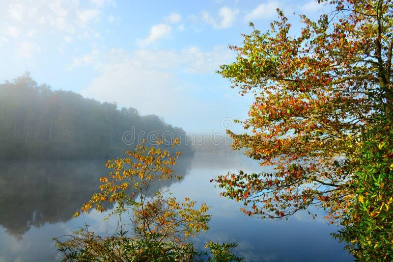 美好的湖风景在有雾的秋天早晨 免版税库存图片