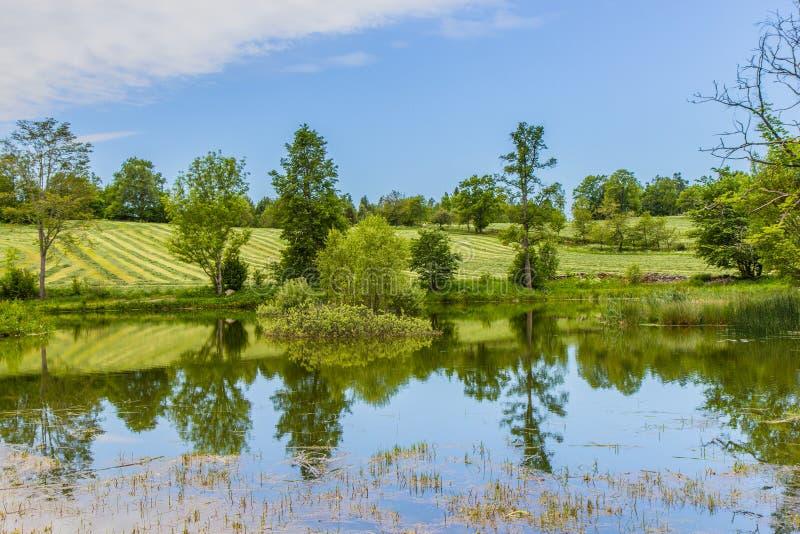 美好的湖风景在瑞典 免版税库存图片