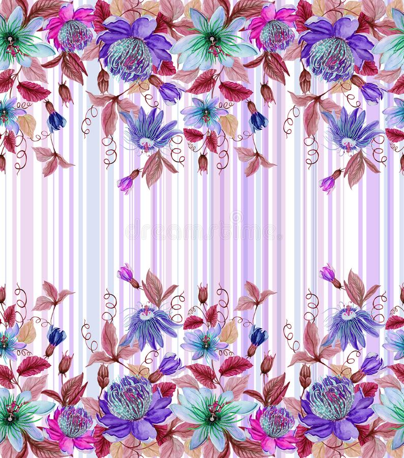 美好的激情开花与绿色叶子的西番莲在镶边背景 无缝花卉的模式 多孔黏土更正高绘画photoshop非常质量扫描水彩 皇族释放例证