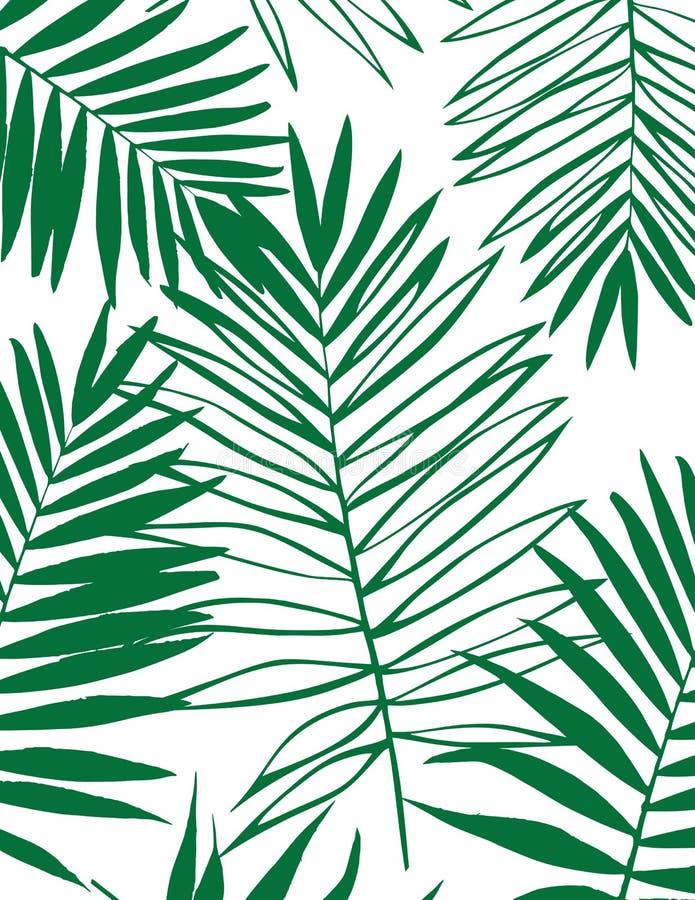 美好的剪影棕榈树背景叶子房子.beautifuler,许多.2018南北通透的热带设计图图片