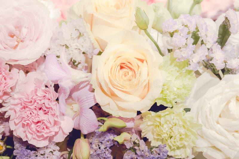 美好的玫瑰和花背景 - (接近的/宏观射击 免版税库存图片