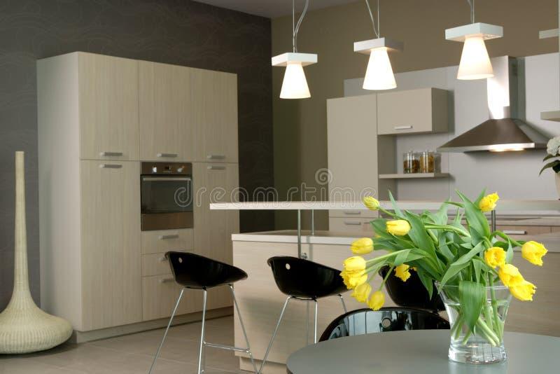 美好的现代设计内部的厨房 免版税库存图片