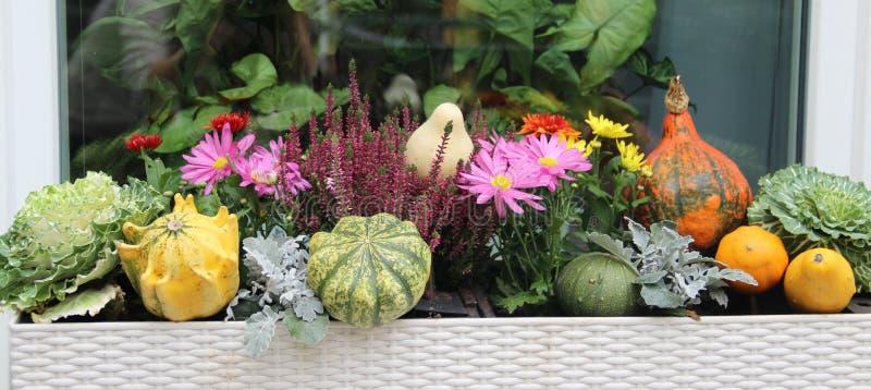 美好的生动的大阳台秋天的混合开花和南瓜 免版税库存图片
